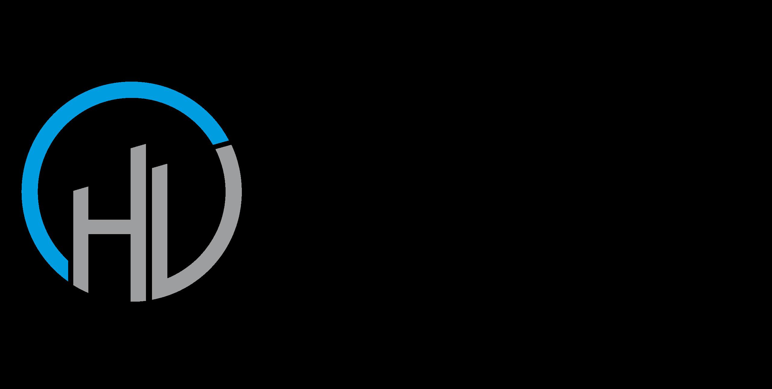 VDIV-Logo